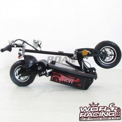 Patinete Electrico RN 1000 Watios 48V -Scooter Gooped-
