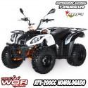 ATV IMR 200cc Matriculable. Quad Adulto