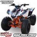 QUAD IMR STORM 150cc - Adulto (Automatico + Reverse)