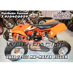 QUAD MX Motor Cross cadete  -BIGGER- 125cc
