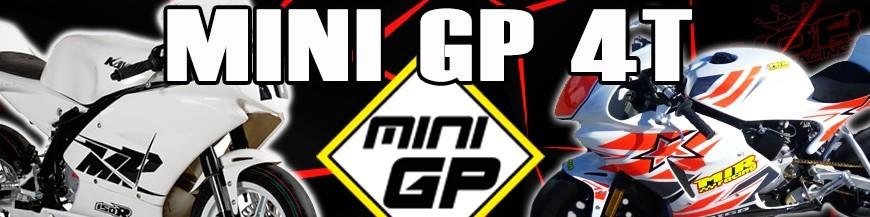 MINI GP 110cc a 220cc